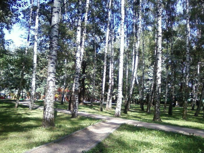 Парк на территории комплекса